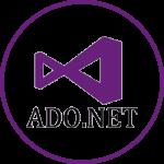 .NET application development.