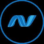 ASP.NET software development services.