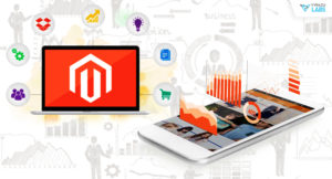 Development services through Magento.