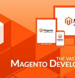 pwa and amp for magento development